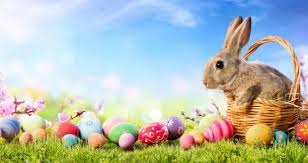 Transfer Station Trading Hours (Easter)
